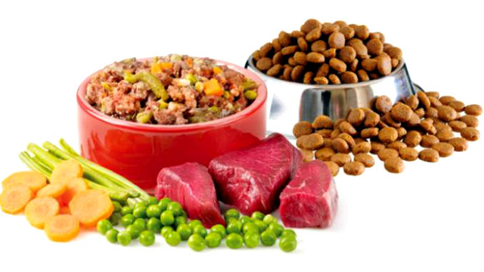 Dry food or natural for dogs